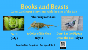 Needham Free Public Library presents- Books and Beasts with Roger Williams Park Zoo - A Color of His Own