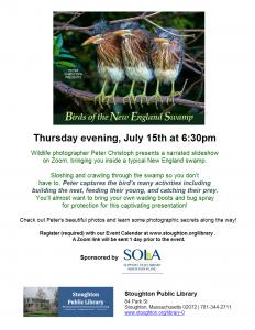 Stoughton Public Library presents- BIRDS OF THE NEW ENGLAND SWAMP Virtual Program
